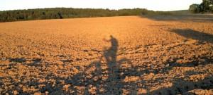 Schatten_Feld