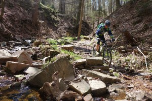 Trail_Nobby