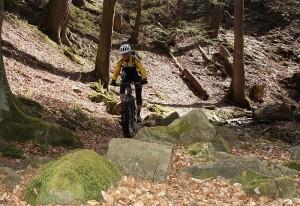 Trail_Schoeni