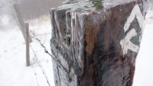Spuren des nächtlichen Eisregens