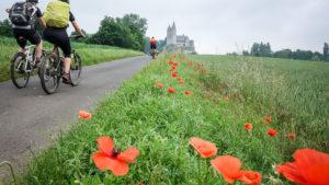 Vor uns der Dom zu Limburg